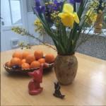 Der Fuchs und der Rabe im Frühling